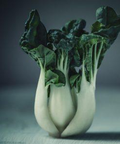 Bok Choy Vegetable