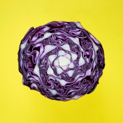 Cabbage Purple Vegetable