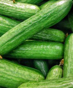 Cucumber Vegetable