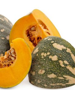 Pumpkin Jap (Kent) Vegetable