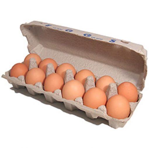 Eggs in box 1 doz.